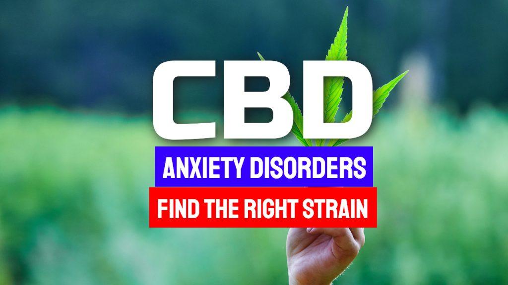 CBD Anxiety Disorders
