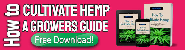 Hemp cultivation ebook download button.