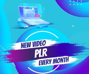 video plr